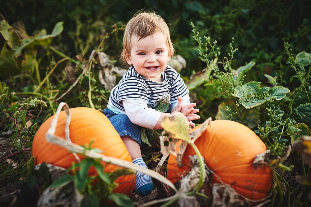 Baby Georg erntet Kürbisse Bauernhof Glabach Neuwied